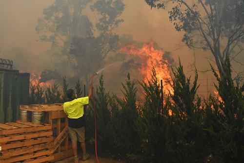 オーストラリア・キャンベラから西に10キロの町で、山火事を消そうと奮闘する人たち(写真:AAP Image/アフロ)