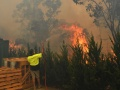気候変動でオランダ最高裁が「驚くべき判決」