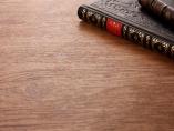 『ホモ・ルーデンス』:仕事の中に遊びの側面を認められるか